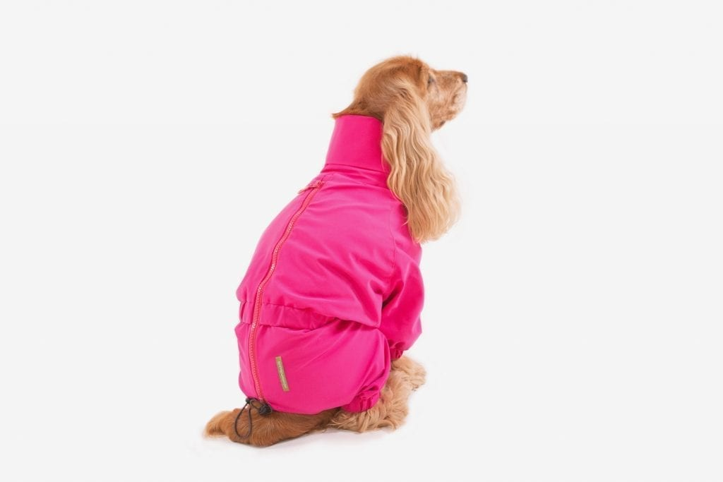 "TRENDY TRENCH60"", the waterproof total-body, UNCONVENTIONALDOG"