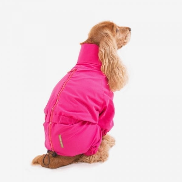 waterproof suit for dogs