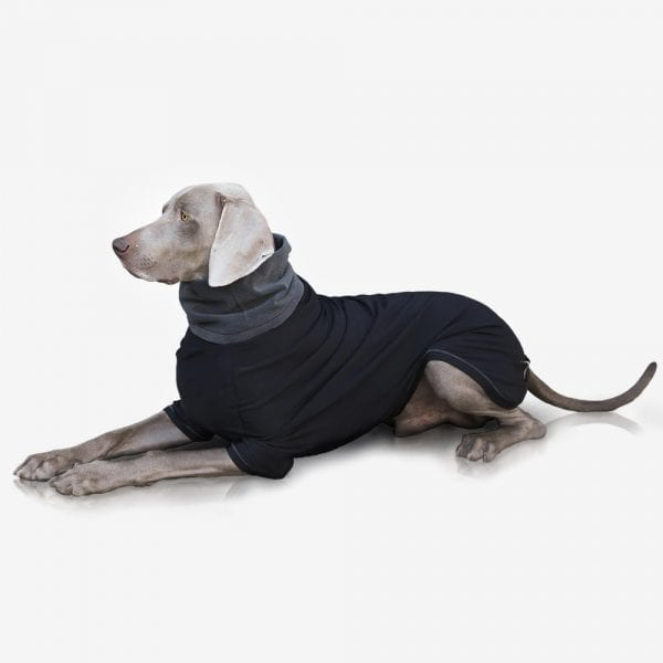 technical sweater for dogs