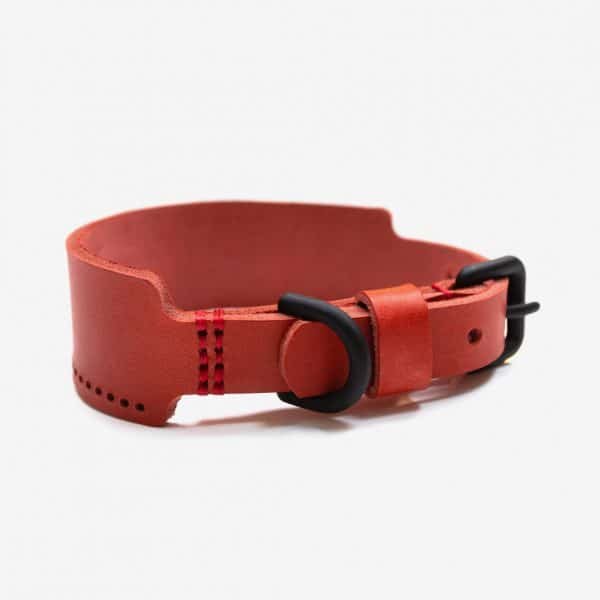 HOBO4.0 the leather collar